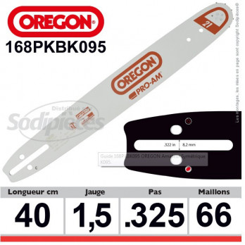 Guide OREGON Amateur Symétrique K095-40 cm