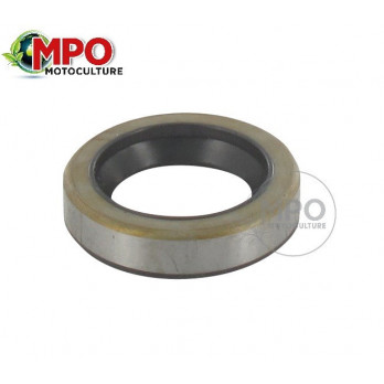 Joint spi pour Briggs & Stratton